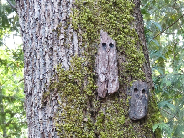 Wood-peckers.