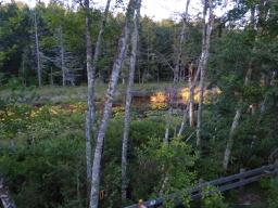 P1190870 Pond at Dusk
